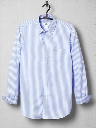 Lacoste Stripe Poplin Regular Fit Shirt