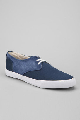 Pointer Chester Sneaker