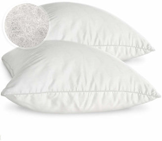 Asstd National Brand Eclipse Memory Fiber 2-Pack Pillows