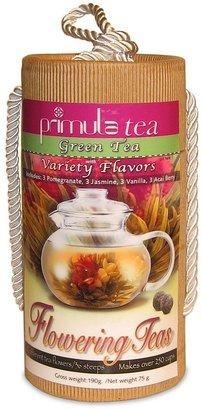 Primula green tea flowering teas 12-pk. variety pack