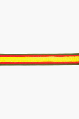 Altuzarra Green, red and yellow Marley Belt
