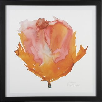 Crate & Barrel Orange Poppy Print