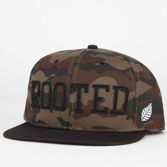 ELM Rooted Mens Snapback Hat