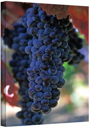 Art wall 36'' x 24'' ''On the Vine'' Canvas Wall Art by Kathy Yates