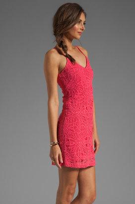 BB Dakota Maiden Crochet Lace Dress