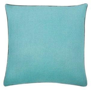 """Thomas Paul Ornithology 22"""" Pillow"""