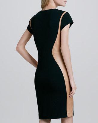 Diane von Furstenberg Dayton Leather-Panel Dress