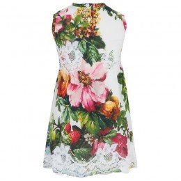 Dolce & Gabbana Floral and Lace Shift Dress