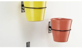 Crate & Barrel Wall Planter Hook