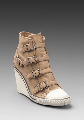 Ash Thelma Wedge Buckle Sneaker
