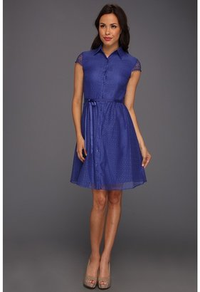 Tahari by Arthur S. Levine Tahari by ASL - C/S Lace Shirt Dress (Royal Blue) - Apparel