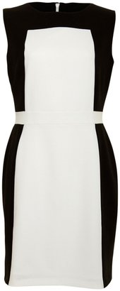 A/Wear White/Black Structured Fitted Dress