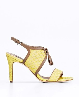 Ann Taylor Gwen Lace Up Exotic Leather Heels