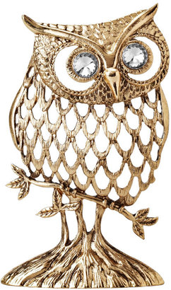 Fossil Owl Jewelry Stand