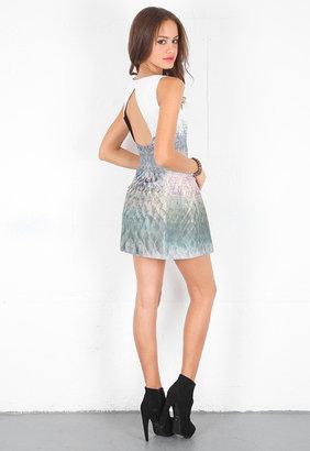 Style Stalker Sedgwick Dress in Snake
