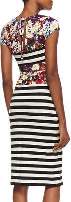 Nicole Miller Artelier Cap-Sleeve Flower & Stripe Print Dress, Multicolor
