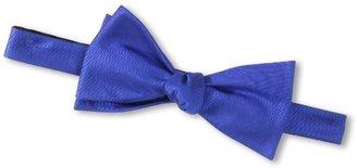 Ben Sherman Men's Britanna Pine Bow Tie