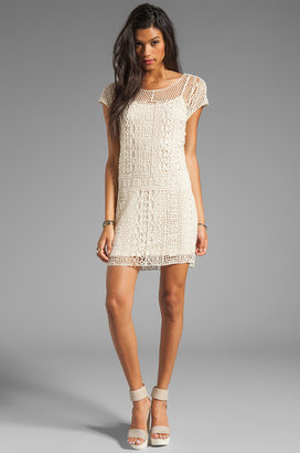 Ella Moss Hailee Crochet Dress