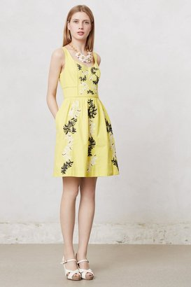 Anthropologie Embroidered Plume Dress