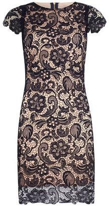 Dorothy Perkins Navy lace overlay dress
