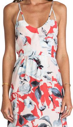 Parker Kisa Dress