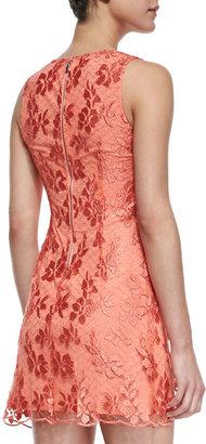 Alice + Olivia Dot Lace Sleeveless Dress