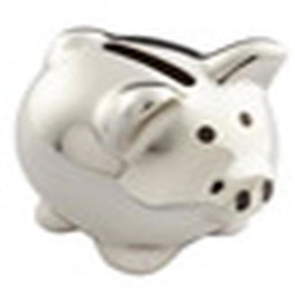 Container Store Disco Piggy Bank Silver
