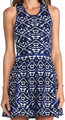 Parker Kaitlyn Dress