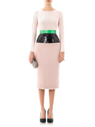 Roksanda Ilincic Lamont contrast panel skirt