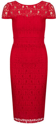 Dorothy Perkins Red lace yoke dress