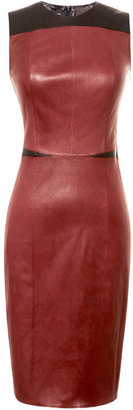 Narciso Rodriguez Two-Tone Fitted Leather Dress