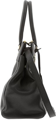 Banana Republic Bettina Haircalf Satchel