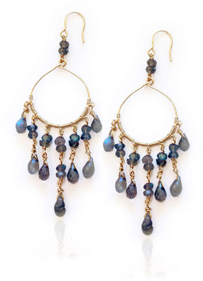 Amy DiGregorio Figs Earrings in Labradorite/Gold
