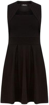 Dorothy Perkins Black collar skater dress