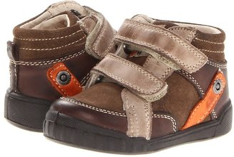 Naturino Falcotto 1251 FA13 (Toddler) (Brown Multi) - Footwear
