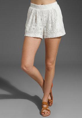 SAM&LAVI Addison Lace Shorts
