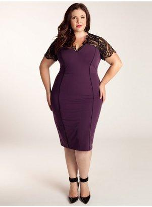 IGIGI Denise Plus Size Dress in Plum