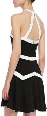 Parker Rogue Bicolor Fit-and-Flare Dress