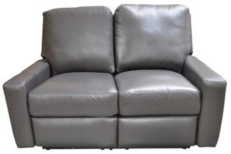Omnia Leather Mirage Reclining Loveseat Omnia Leather Body Fabric: Empire Butternut, Reclining Type: Power