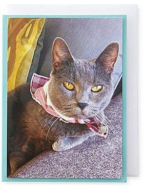 Martha Stewart MarthaCelebrationsTM Birthday Card – Cat