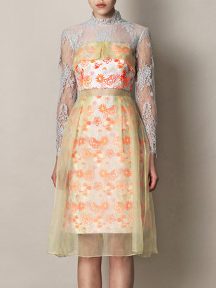 Erdem Leticia embroidered organza overlay dress