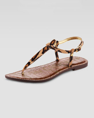 Sam Edelman Gigi Leopard-Print Thong Sandal (CUSP Most Loved!)