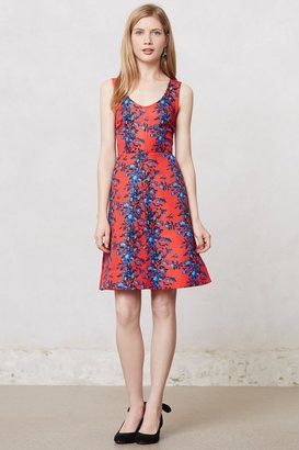 Anthropologie Blushing Delphinium Dress