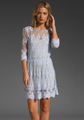 Lonely Hearts Alice Lace Dress