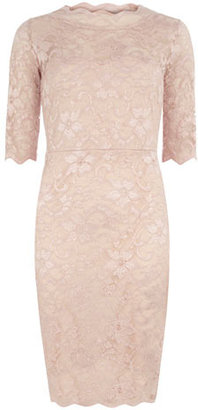 Dorothy Perkins Pink lace dress