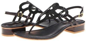 David Tate Honeybee (Black) - Footwear