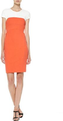 Narciso Rodriguez Cap-Sleeve Colorblock Sheath Dress