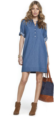Isabella Oliver The Chambray Dress