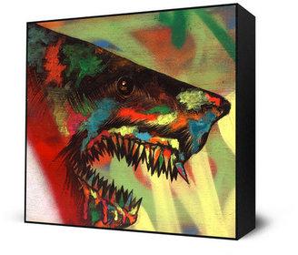 STUDY Eyes On Walls Shark 1 Mini Art Block