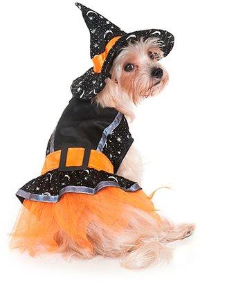 Bed Bath & Beyond Witch Dog Costume in Black/Orange